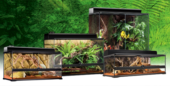 The Exo Terra Natural Large enclosure is good value for money and provides flexible height options for your Bearded Dragon